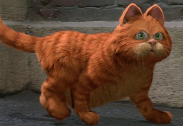 Il gatto Garfield mentre cammina