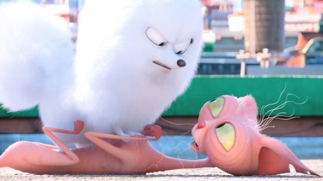 Gidget in una scena di Pets - Vita da Animali
