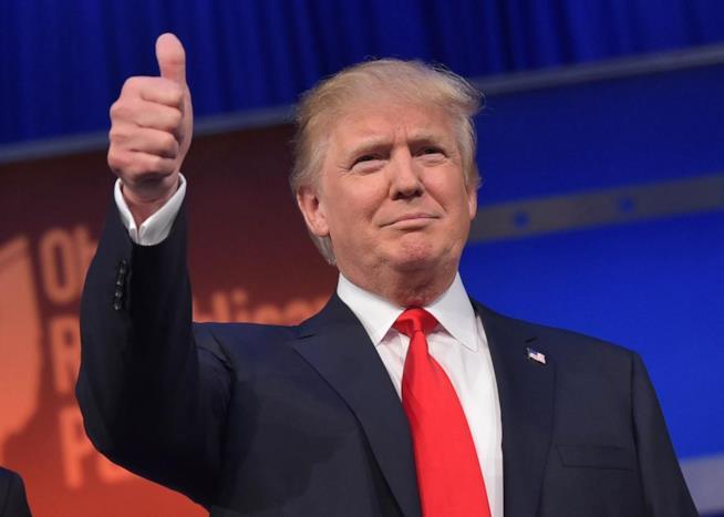 Un'immagine di Donald Trump