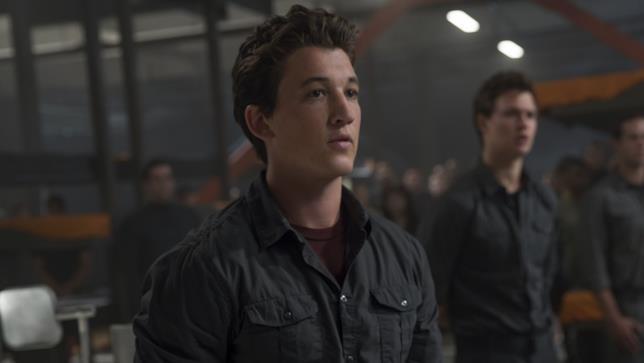 Miles Teller in Divergent