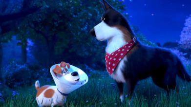 Pets 2 - Vita da animali: il nuovo trailer con la voce di Harrison Ford