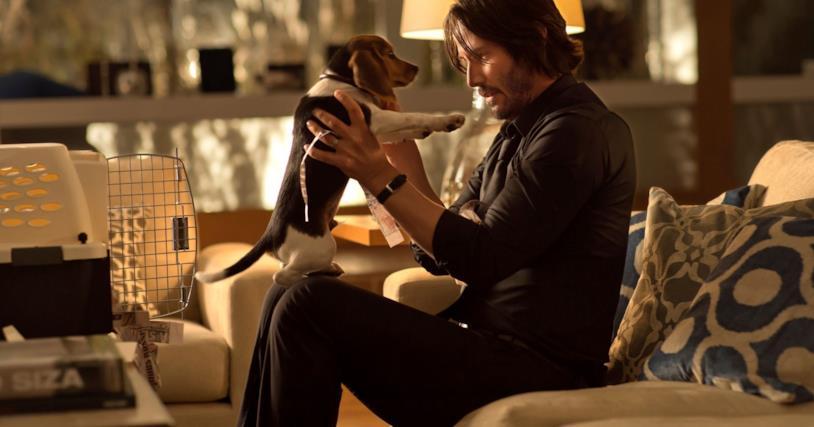 John Wick coccola la sua cagnolina