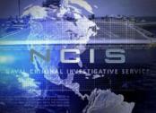 Il successo di NCIS