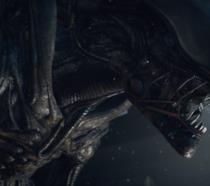 Un'immagine del film Aliens