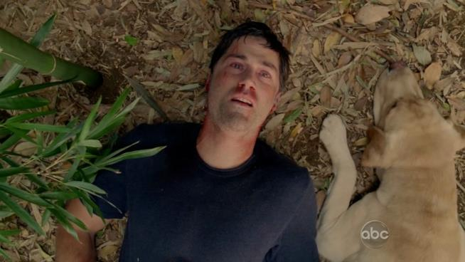 Matthew Fox, finale di Lost