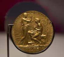 La medaglia del premio Nobel