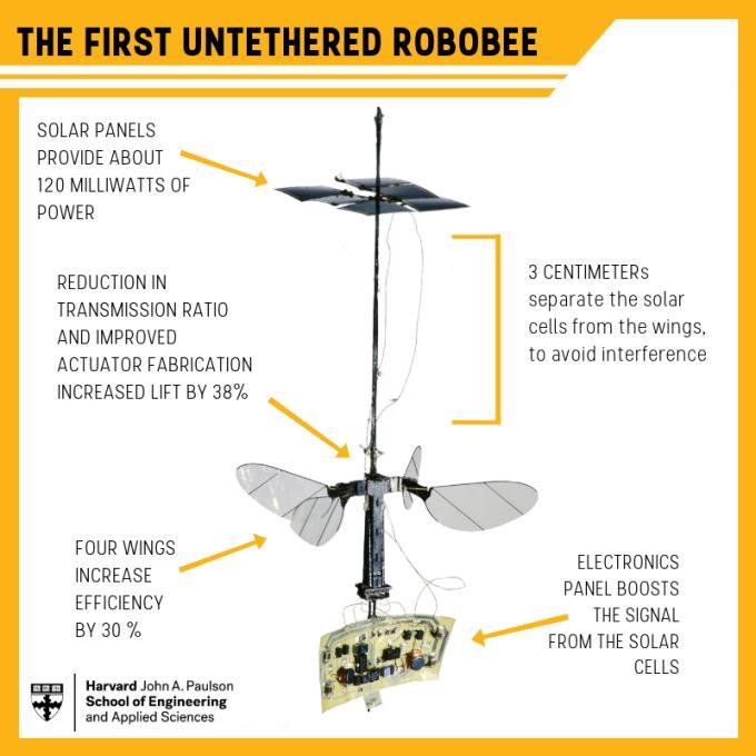 Uno schema di tutte le componenti del drone