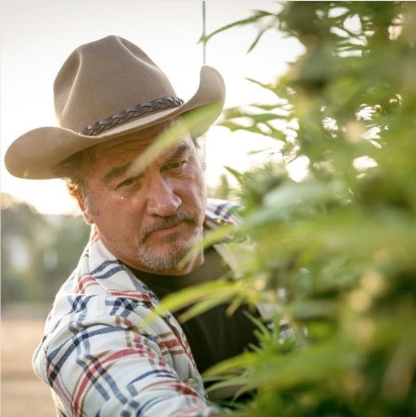 Jim Belushi coltiva cannabis nella sua Belushi's Farm