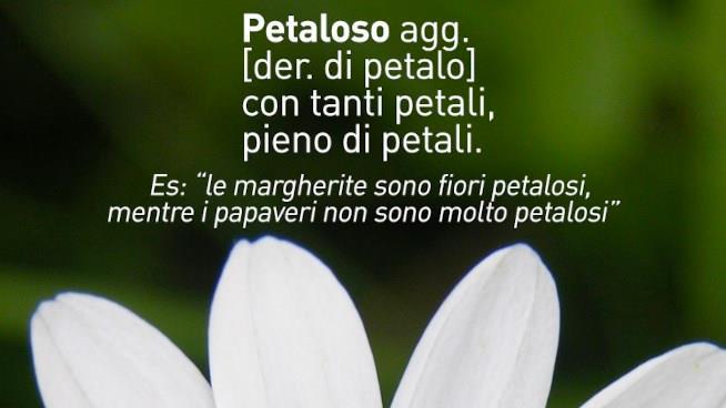 Immagine di National Geographic Channel Italy con la spiegazione di Petaloso