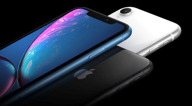 iPhone XR in blu, bianco e nero in un'immagine stampa