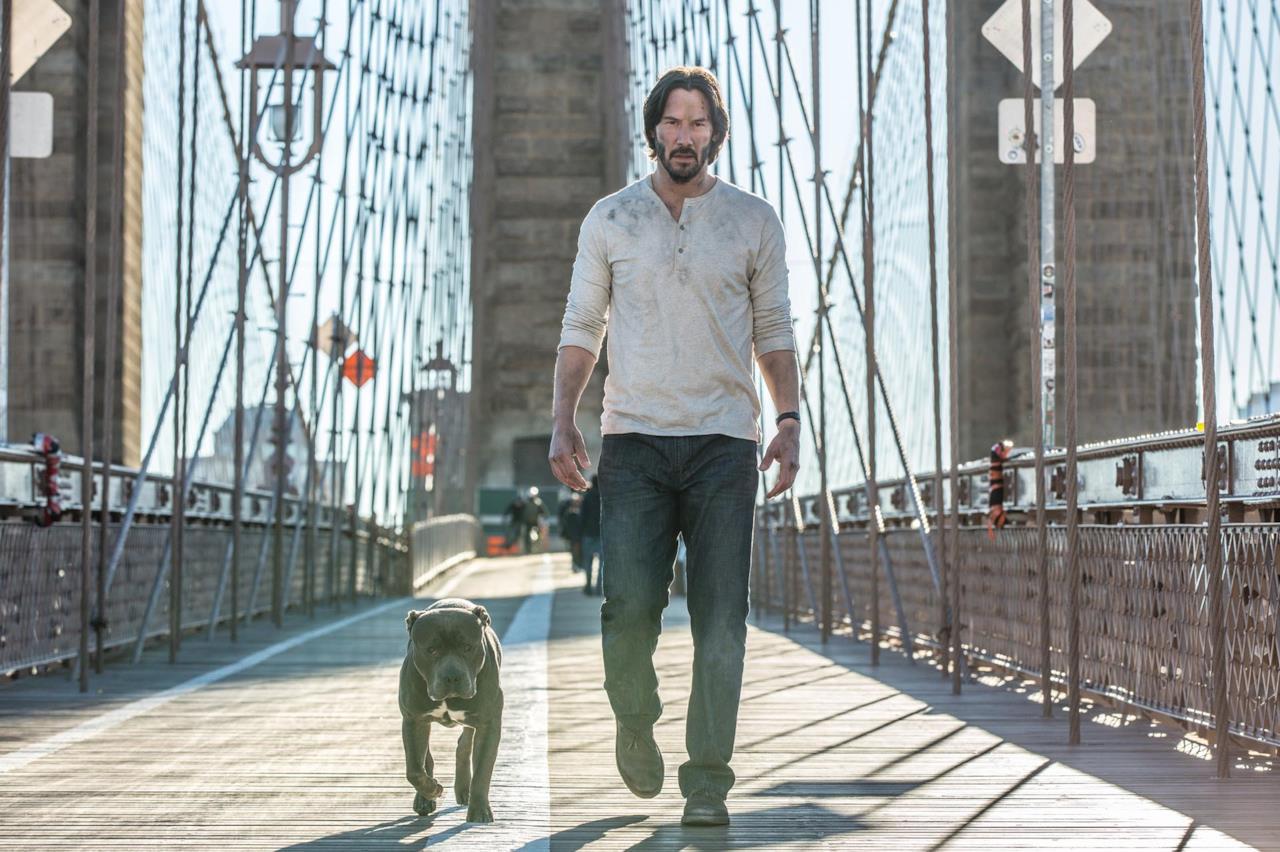 John Wick e il suo cane a New York