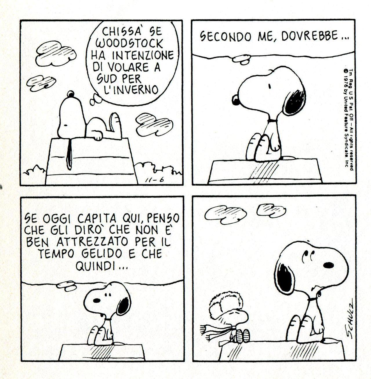 Snoopy Freddo Powermall