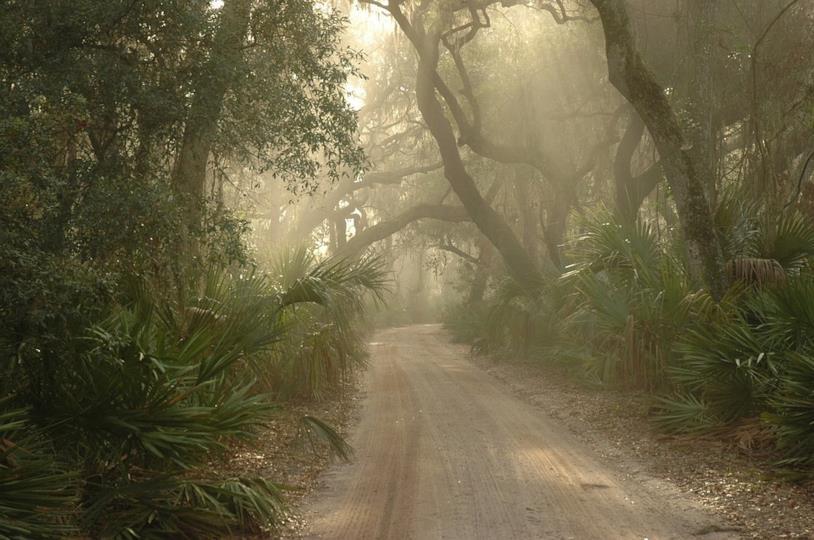 Una strada apparentemente deserta
