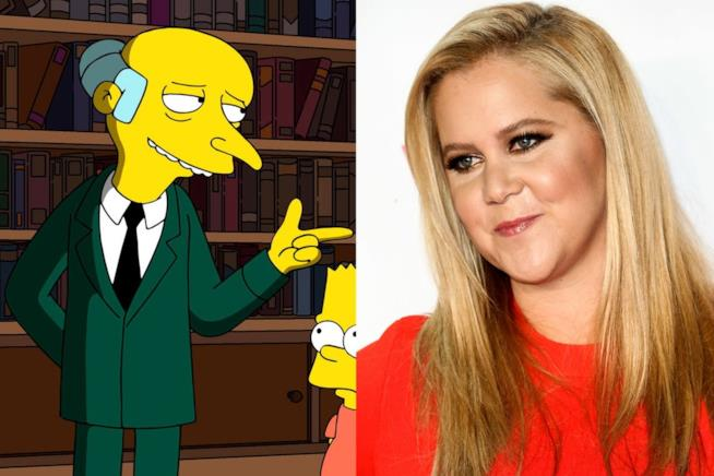 Amy Schumer e Mr Burns dei Simpson