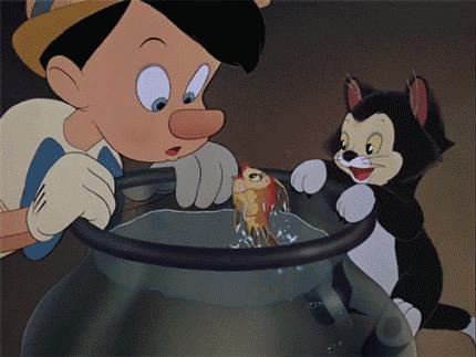La pesciolina Cleo in Pinocchio