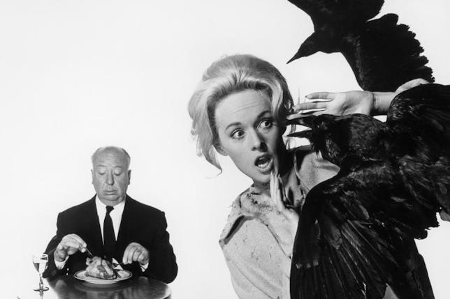 Hitchcock seduto a cena mentre Tippi Hedren è atterrita da un volatile