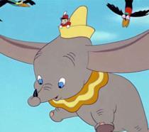 Dumbo vola