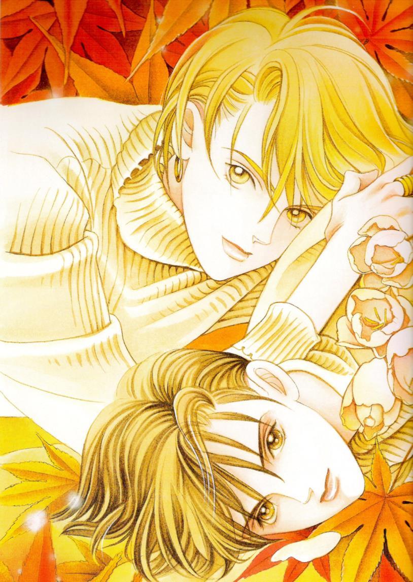 Un'illustrazione di La principessa splendente
