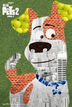Muri e palline da tennis: ecco di cosa è composto Max