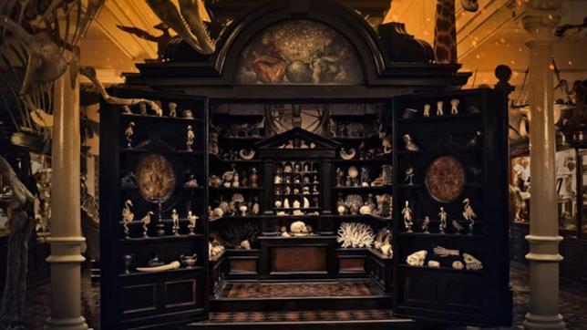 La stanza delle meraviglie nel film