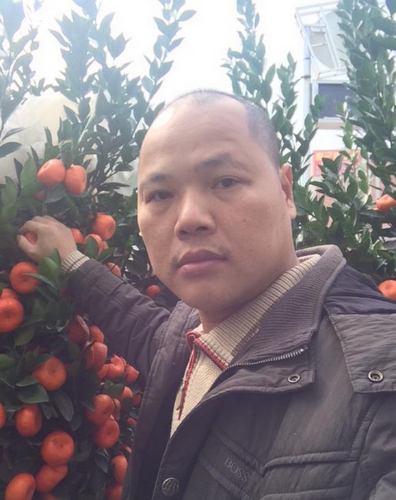 Brother Orange davanti alle arance