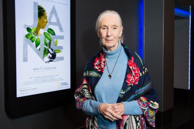 L'antropologa ed etologa Jane Goodall