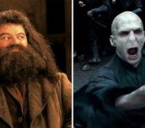 Hagrid e Voldemort