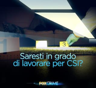 Saresti in grado di lavorare per CSI?