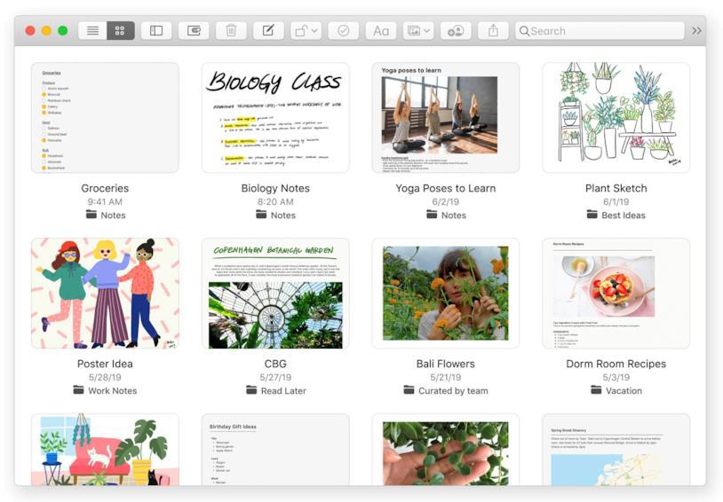 Immagine stampa della rinnovata applicazione Note di macOS Cataline