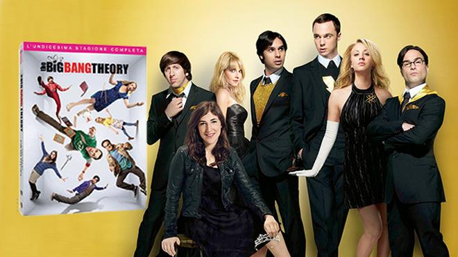 The Big Bang Theory 11 in DVD