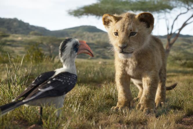 Zazu parla con il leoncino Simba