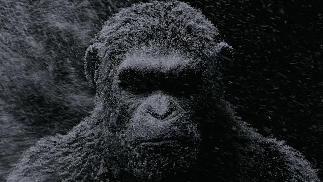 Andy Serkis in La Guerra del Pianeta delle Scimmie