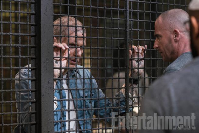 scena di Prison Break 5