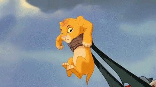Il piccolo Simba in Il Re Leone