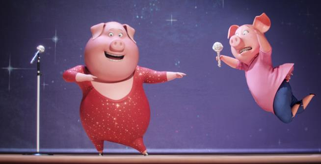 Due maiali sul palcoscenico di Sing