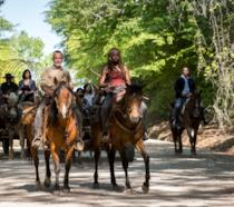 The Walking Dead 9x01: la gallery con le immagini dell'episodio
