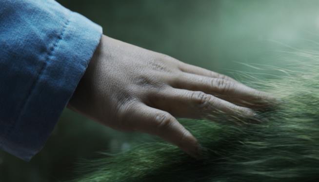 Una tenera immagine del Film il Drago Invisibile