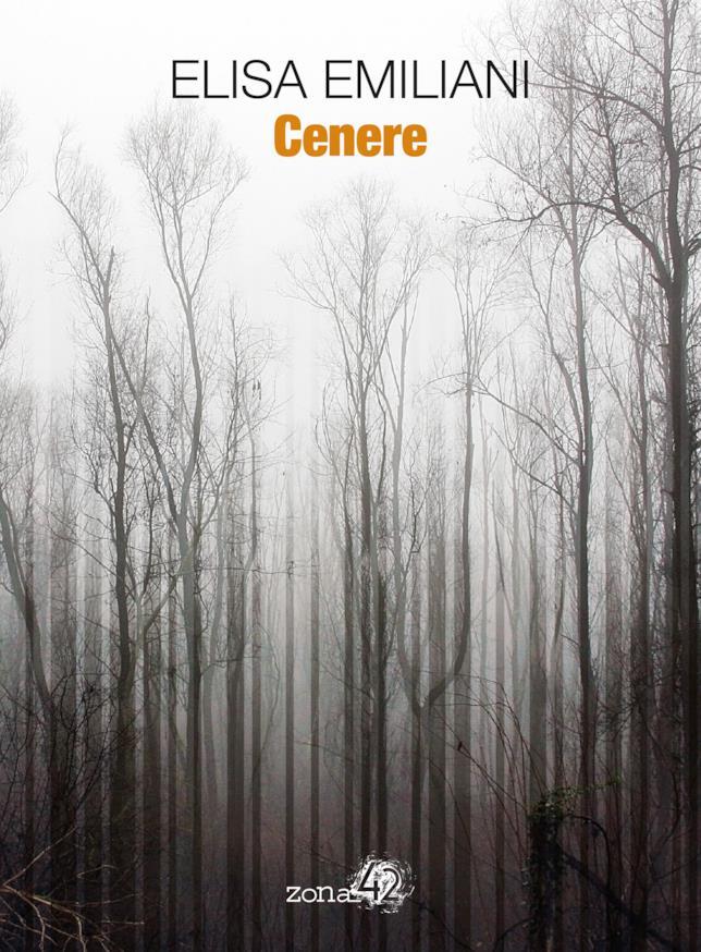 La copertina di Cenere