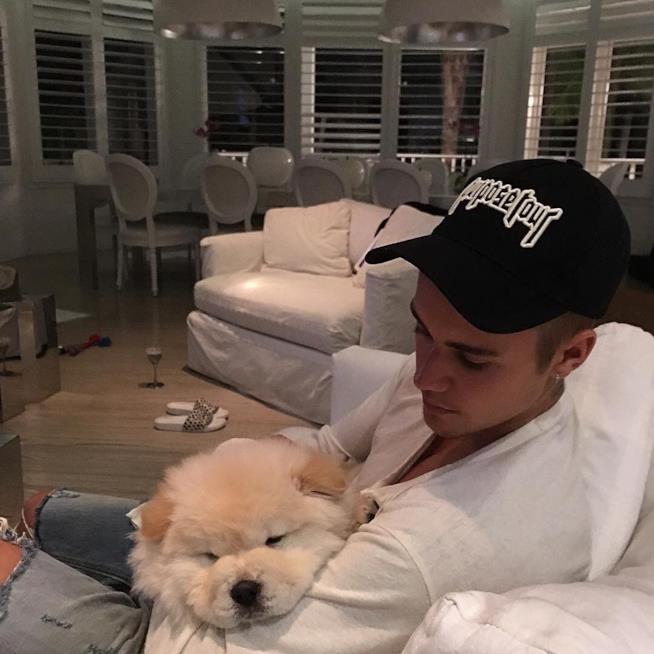 Primo piano di Justin Bieber con il suo cane