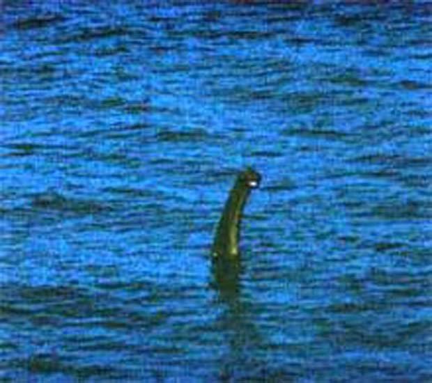 La versione del mostro di Loch Ness fotografata da Anthony Shiels