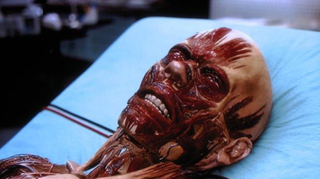 La trasformazione di Bacon nel film