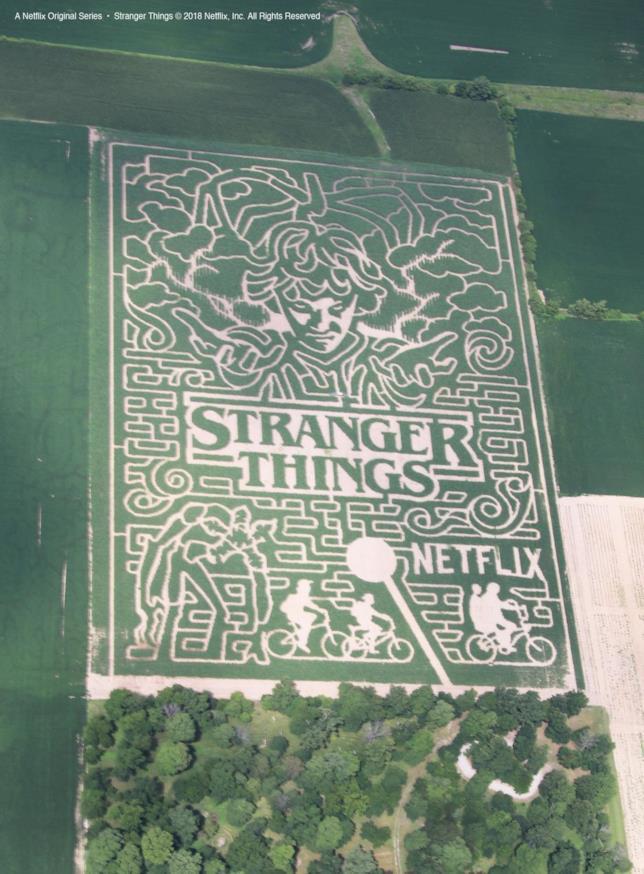 Il labirinto di Stranger Things visto dall'alto