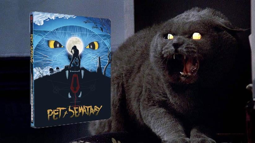 Scena del film Cimitero vivente con l'iconico gatto del film