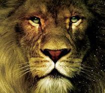 Il Leone Aslan
