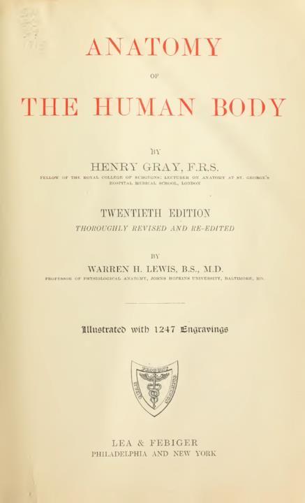 Il libro di anatomia Grey's Anatomy, che ha influenzato Basquiat