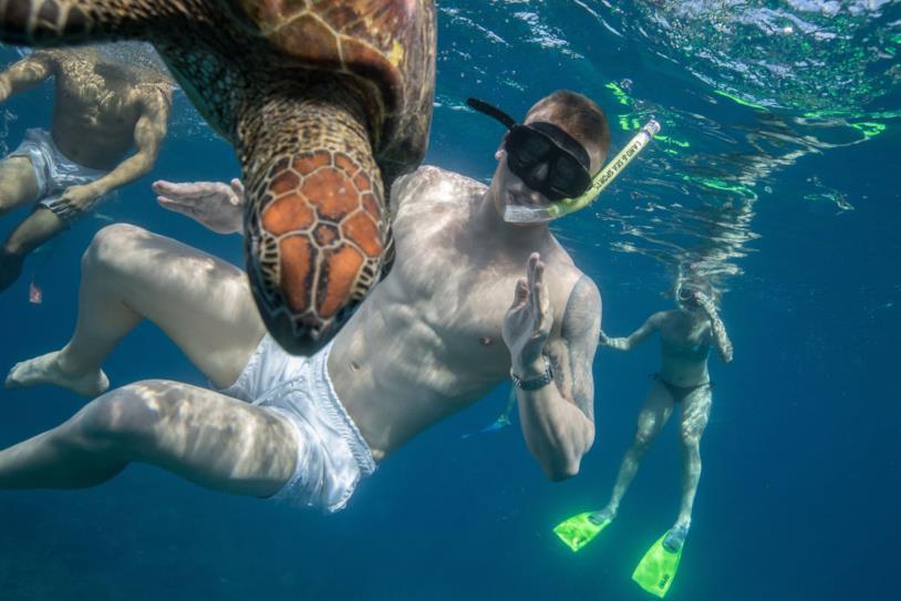Ragazzo nuota con le tartarughe al largo dell'Isola di Lady Musgrave