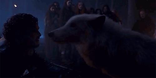 Jon carezza Spettro