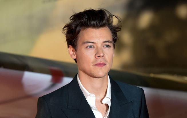 Harry Styles sarà il prossimo James Bond?