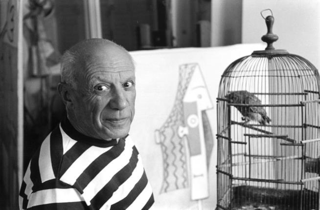 L'artista Picasso