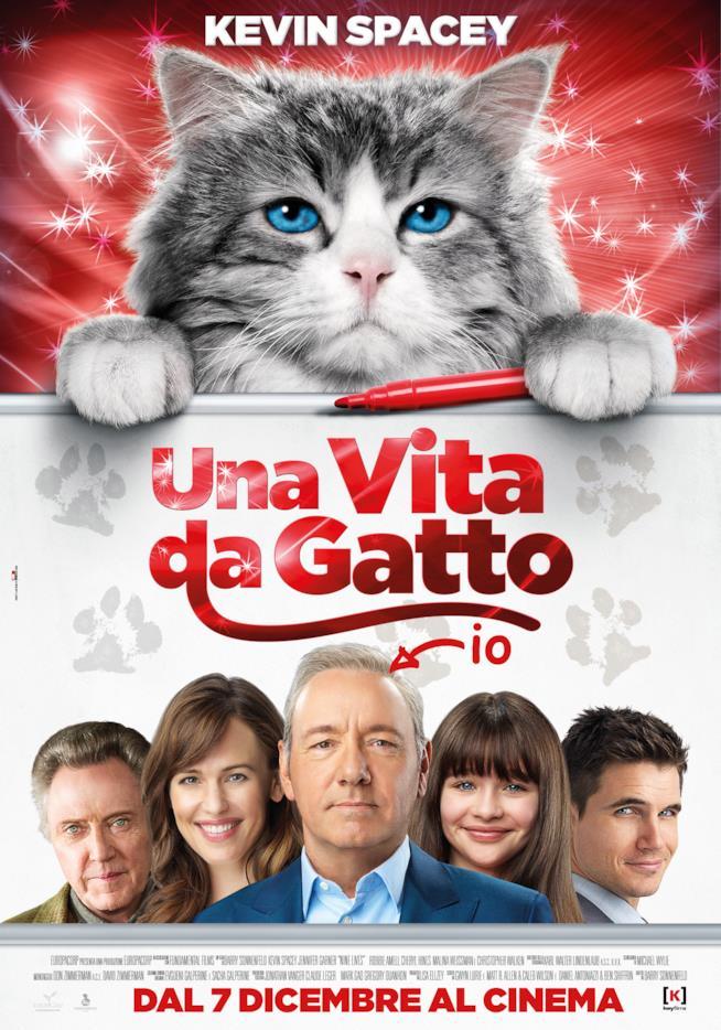 Poster del film Una vita da gatto